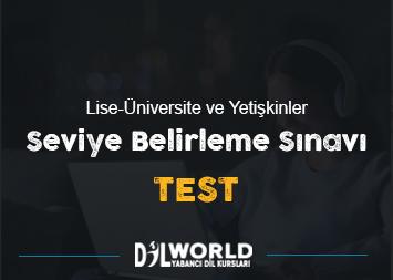 Seviye Belirleme Sınavı (TEST)
